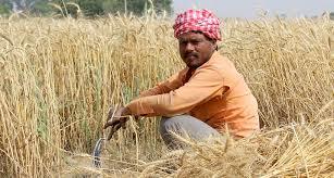 जहानाबाद : प्रत्येक शुक्रवार को किसानों की सुनी जाएंगी समस्याएं