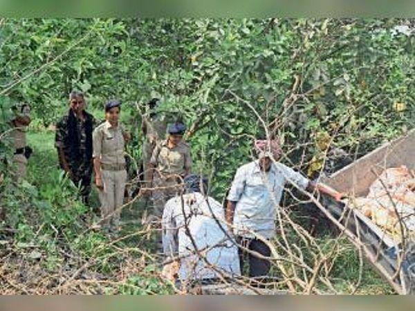 जहानाबाद: बिस्टॉल से राइफल, कारतूस और भारी मात्रा में विस्फोटक बरामद